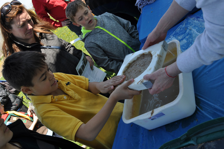 ERCA Earth Day (Tree Planting) Water Lily Papermaking Workshop